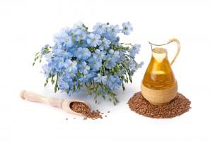 linum plant oil in argan oil from urban angels hair design